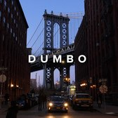 DUMBO Brooklyn | GH5S cinematic footage