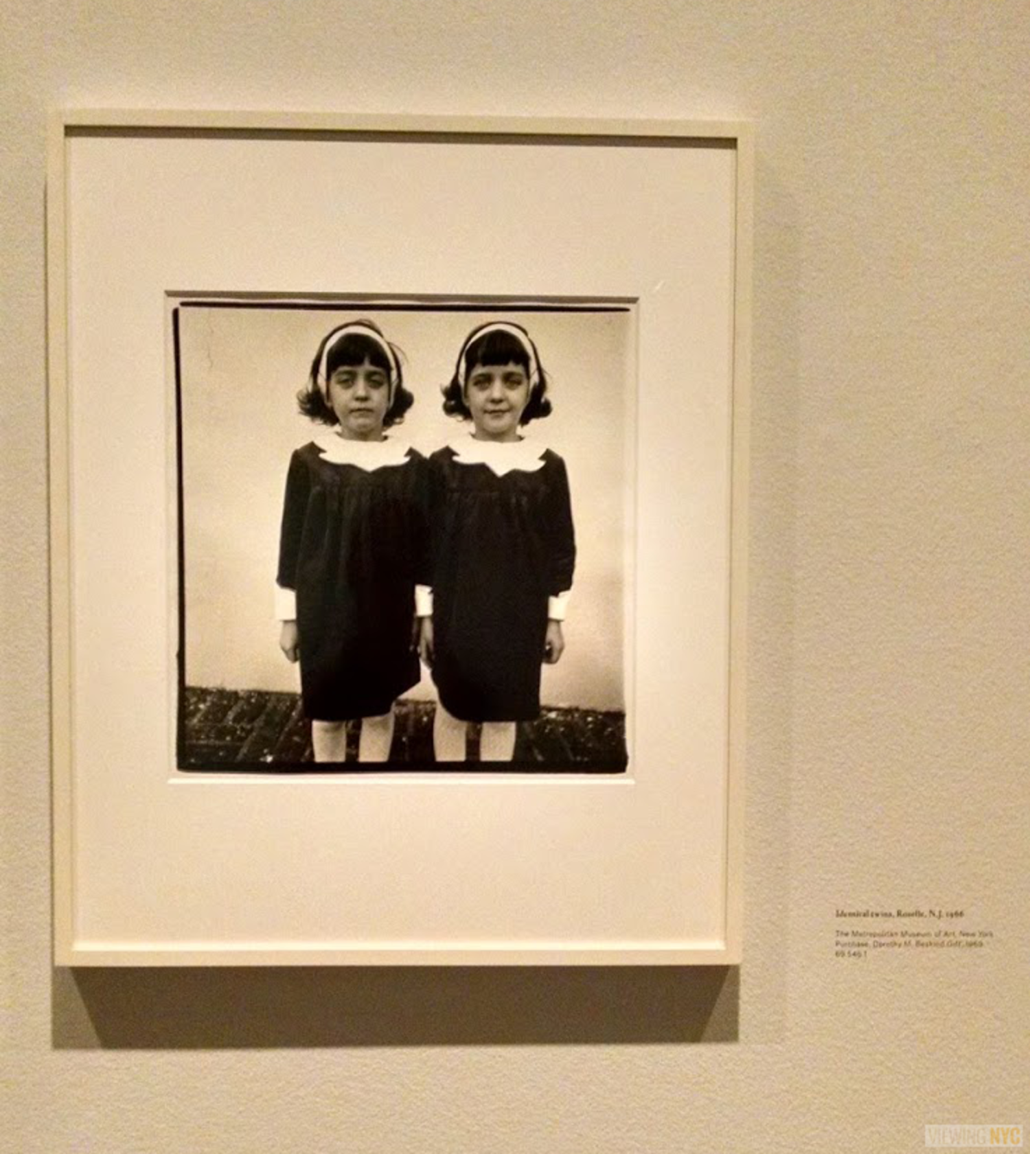 Identical twins, Roselle, N.J. | Diane Arbus at the Met Breuer