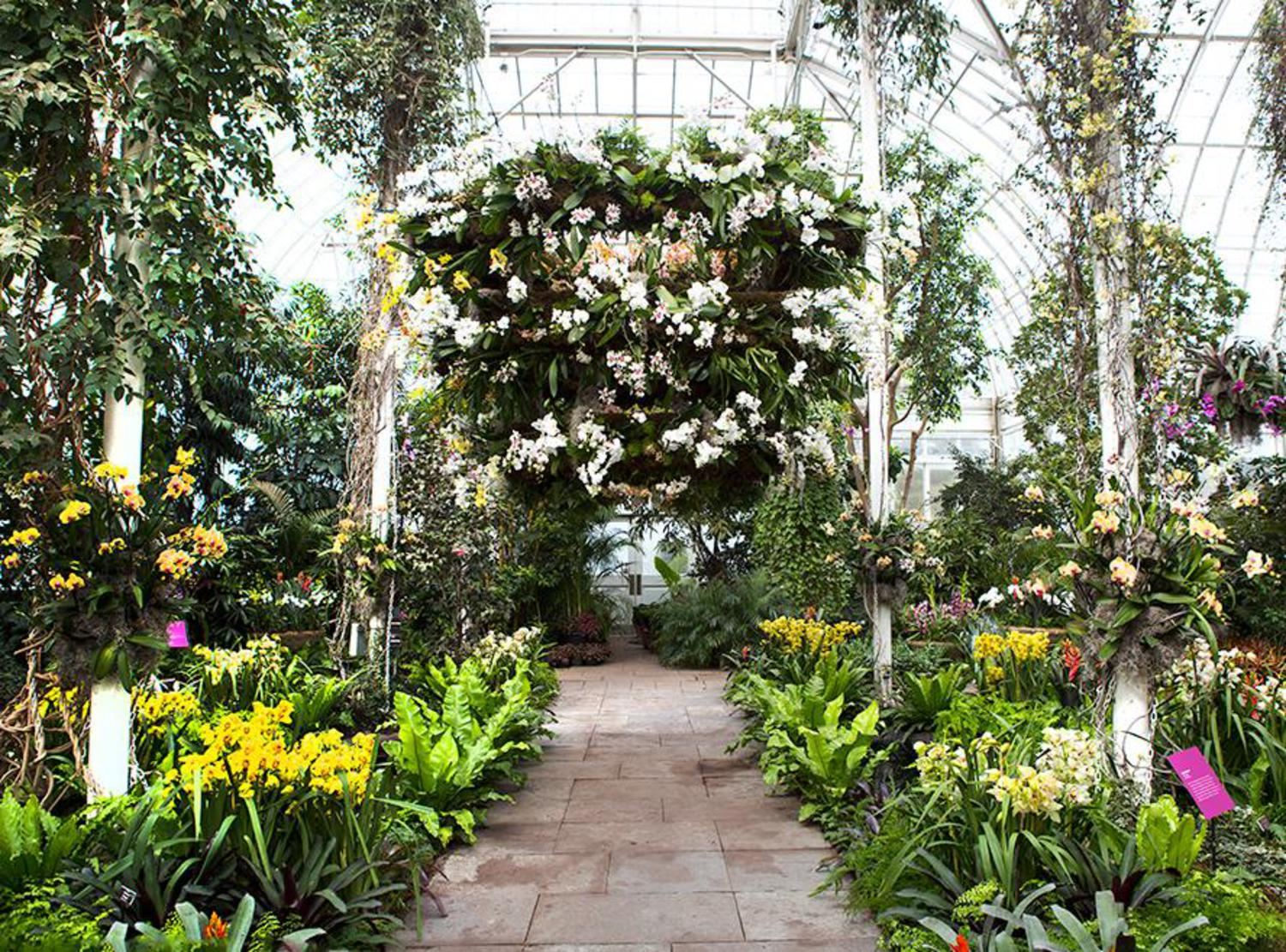 Go Inside The Gorgeous Orchid Show At The New York Botanical Garden Viewing Nyc