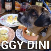 Do Dogs Belong at Restaurants?