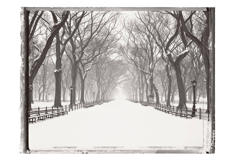 Deserted Central Park