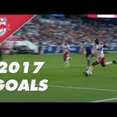 Every Single Goal of 2017!