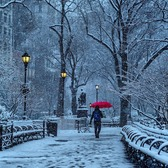 Union Square Park, New York, New York