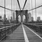 Empty #viewingnyc #brooklynbridge #monochromeworld