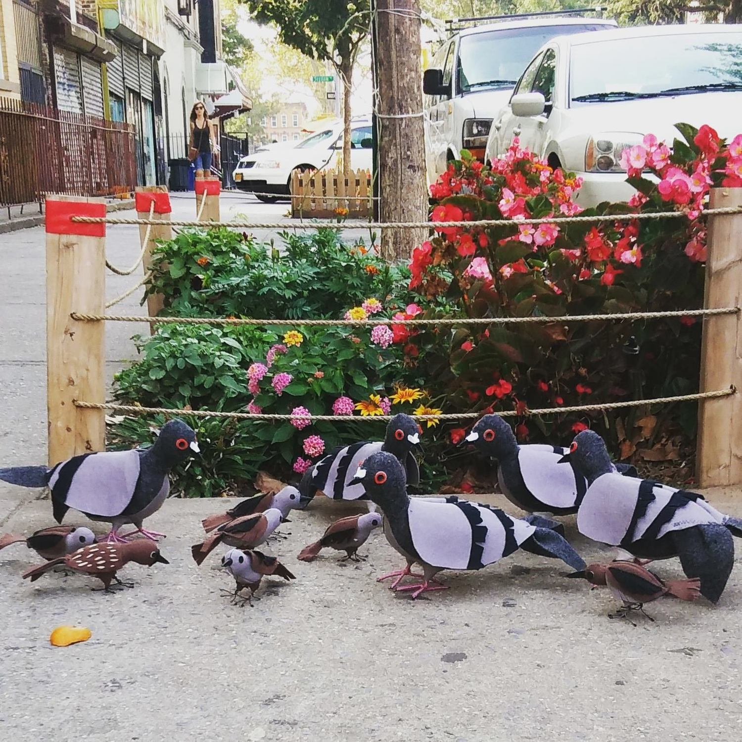 New birds to add to my flock! We will be in union square tomorrow Friday.