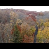 Above the trees: Staten Island's peak fall foliage