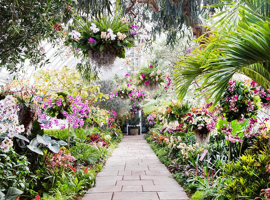 Image Result For Home And Garden Persona