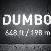 DUMBO | <b>D</b>own <b>U</b>nder the <b>M</b>anhattan <b>B</b>ridge <b>O</b>verpass
