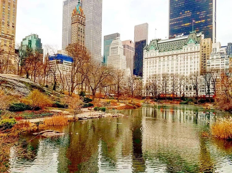 Central Park Winter - Feliz Natal