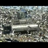 The Fresh Kills Story: From World's Largest Garbage Dump to a World-Class Park