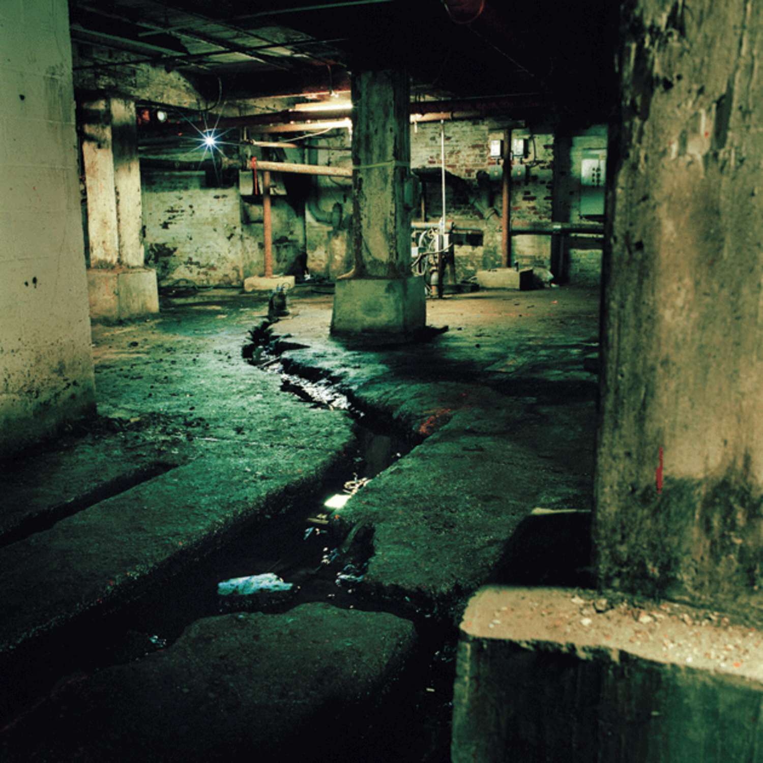 Photograph of Brouwer's Brook by Miska Draskoczy, whose monograph Gowanus Wild will be published this spring