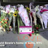 David Bowie Fans Remember