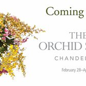 The 2015 Orchid Show is Coming!