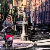 Walking the Dog. West Village, New York City
