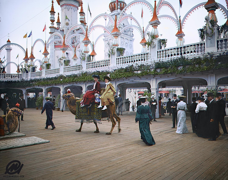 Camel riding, Coney Island, New York, 1905. Luna Park.