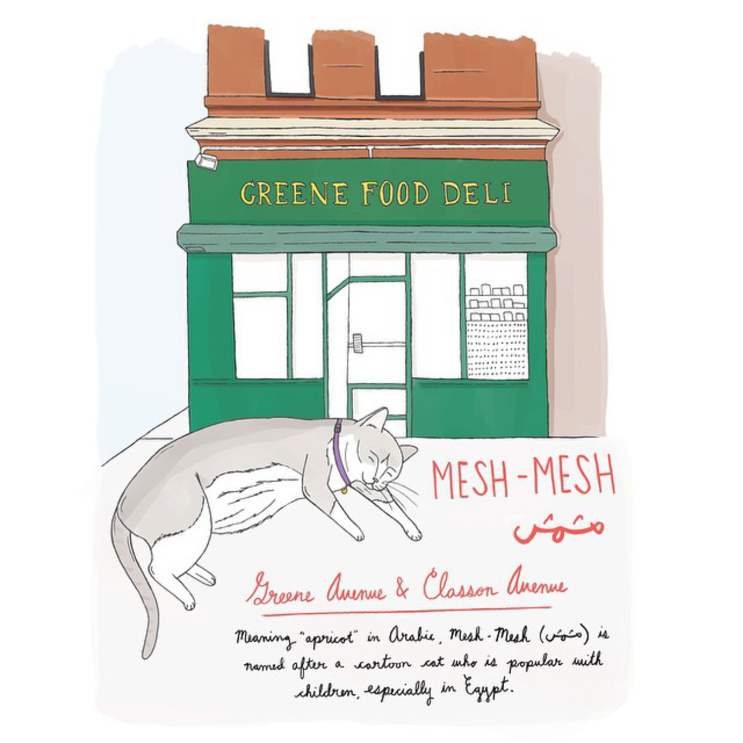 Mesh-Mesh // Clinton Hill, Brooklyn  #brooklynbodegacats #clintonhill #brooklyn #bodegacatsofinstagram #bodegacats #illustration