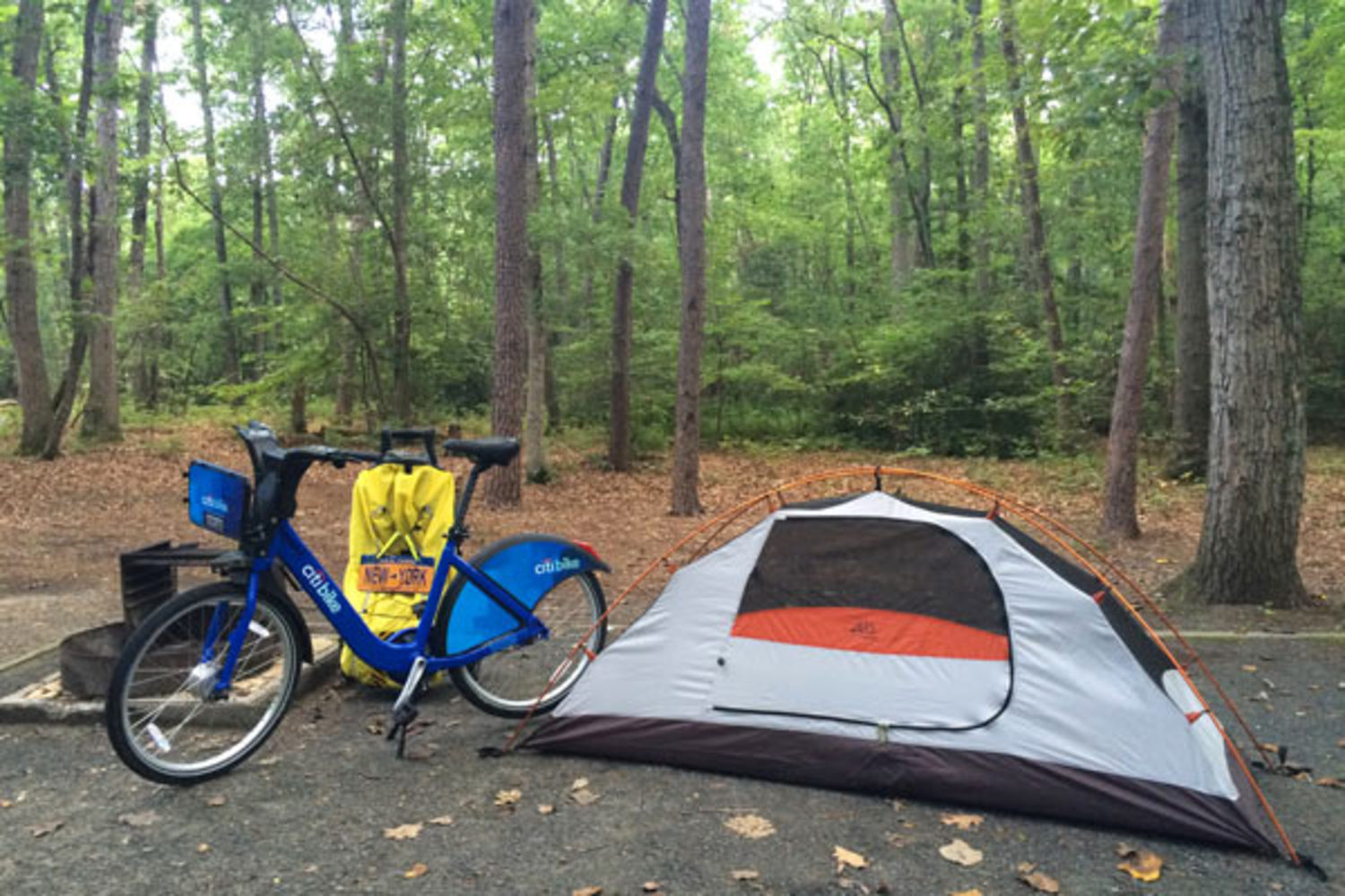 Temporary shelter, pitched in Martinak State Park in Denton, MD.