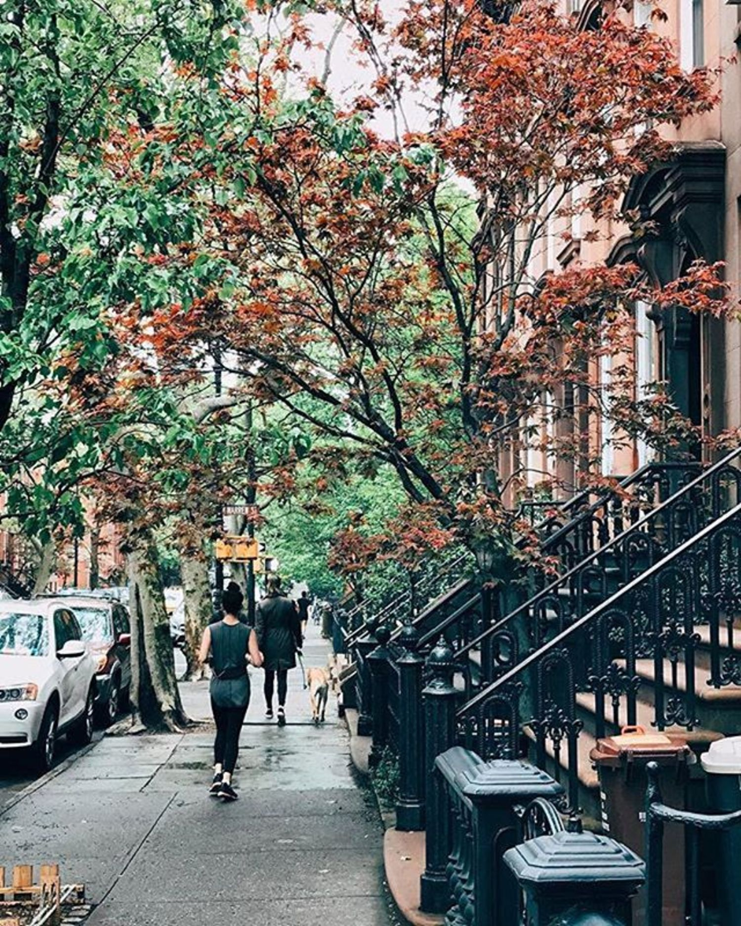 Cobble Hill, Brooklyn. Photo via @melliekr #viewingnyc