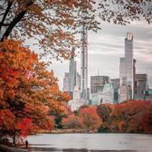 The Lake at Central Park, Manhattan