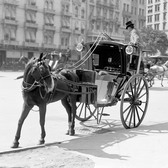 View of a hansom cab, parked at the sidewalk, near Madison Square, New York, 1905.
