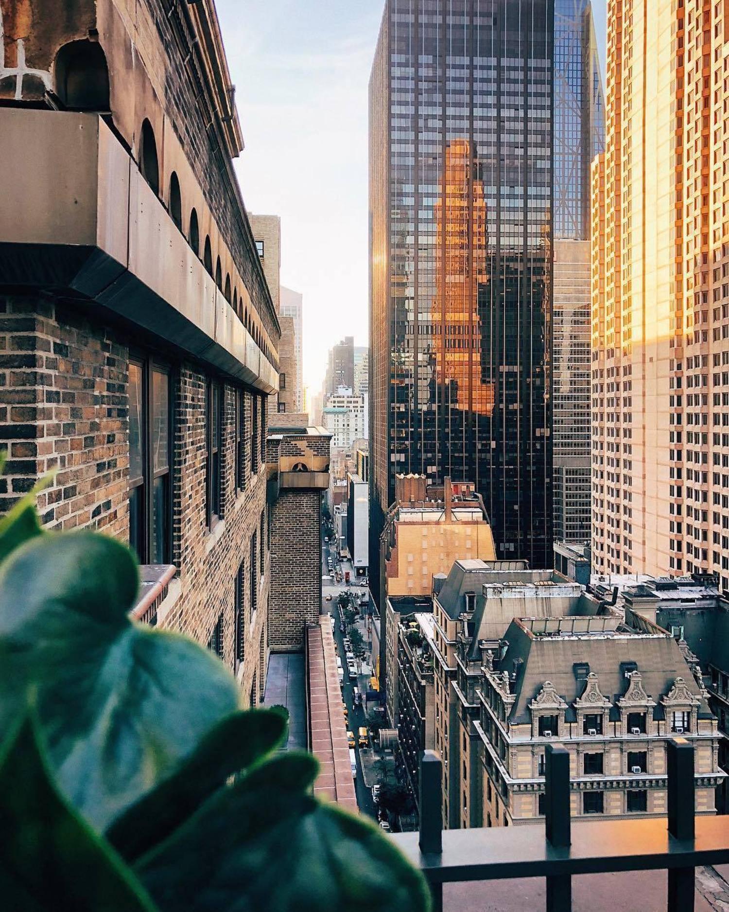 New York, New York. Photo via @melliekr #viewingnyc #newyorkcity #newyork #nyc