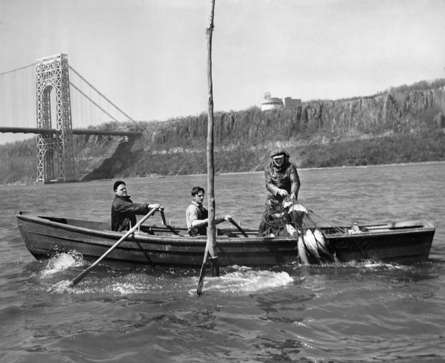 "April 18, 1947: ""In my forty-five years of shad fishing, this was the slowest season to get under way I've ever seen,"" said Harry E. Lyons, owner of the boat pictured, in The Times's News of Food. It warned that shad was ""an especially bony fish so that it is best to have the bones removed at the market. Some stores, such as the Gristede ones, bone most all the shad that they sell."" The article also included a recipe for baked stuffed shad that was ""Times-tested,"" as in ""tried in The New York Times kitchens."""