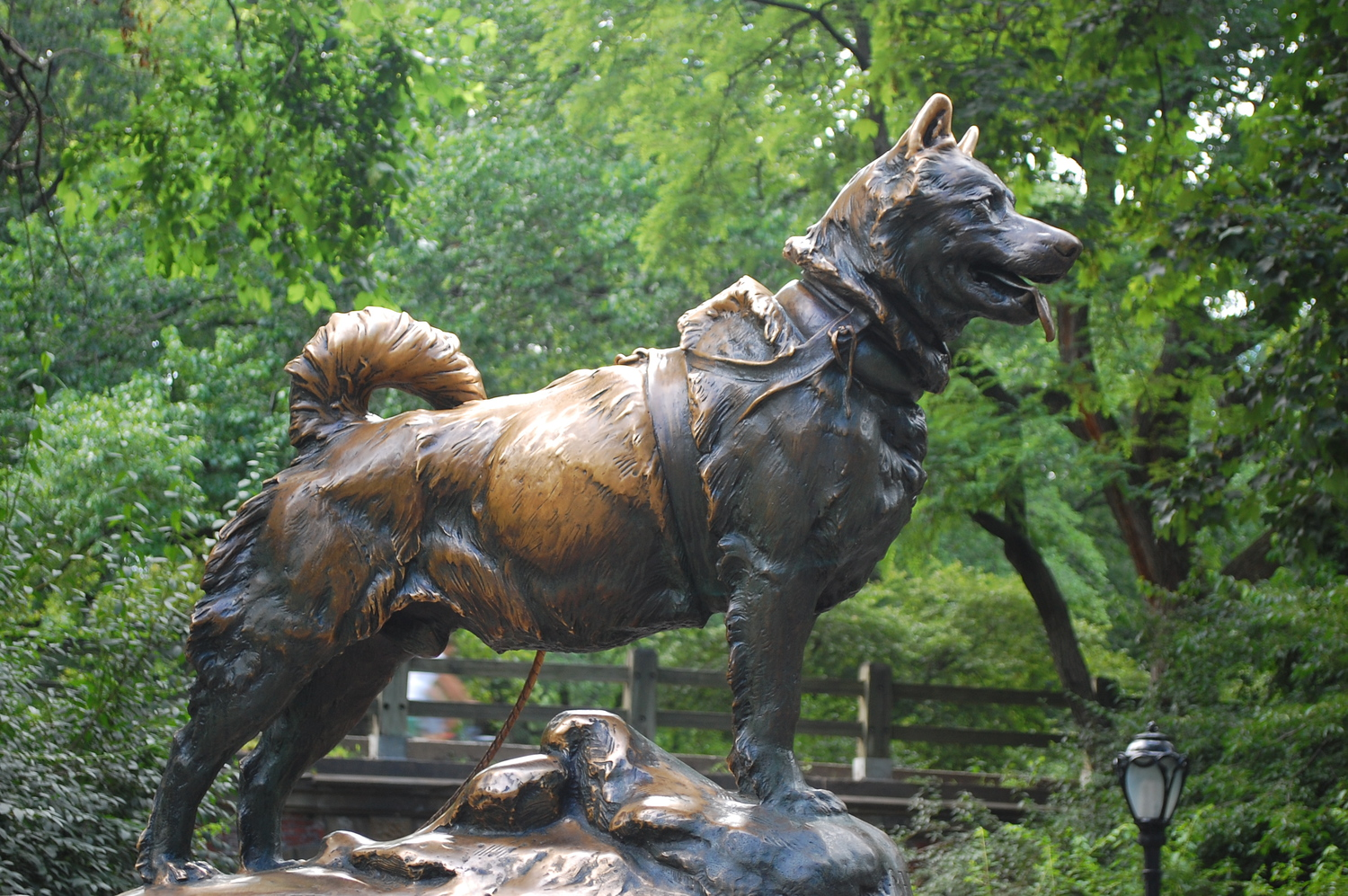 DSC_6382 | Balto statue in Central Park
