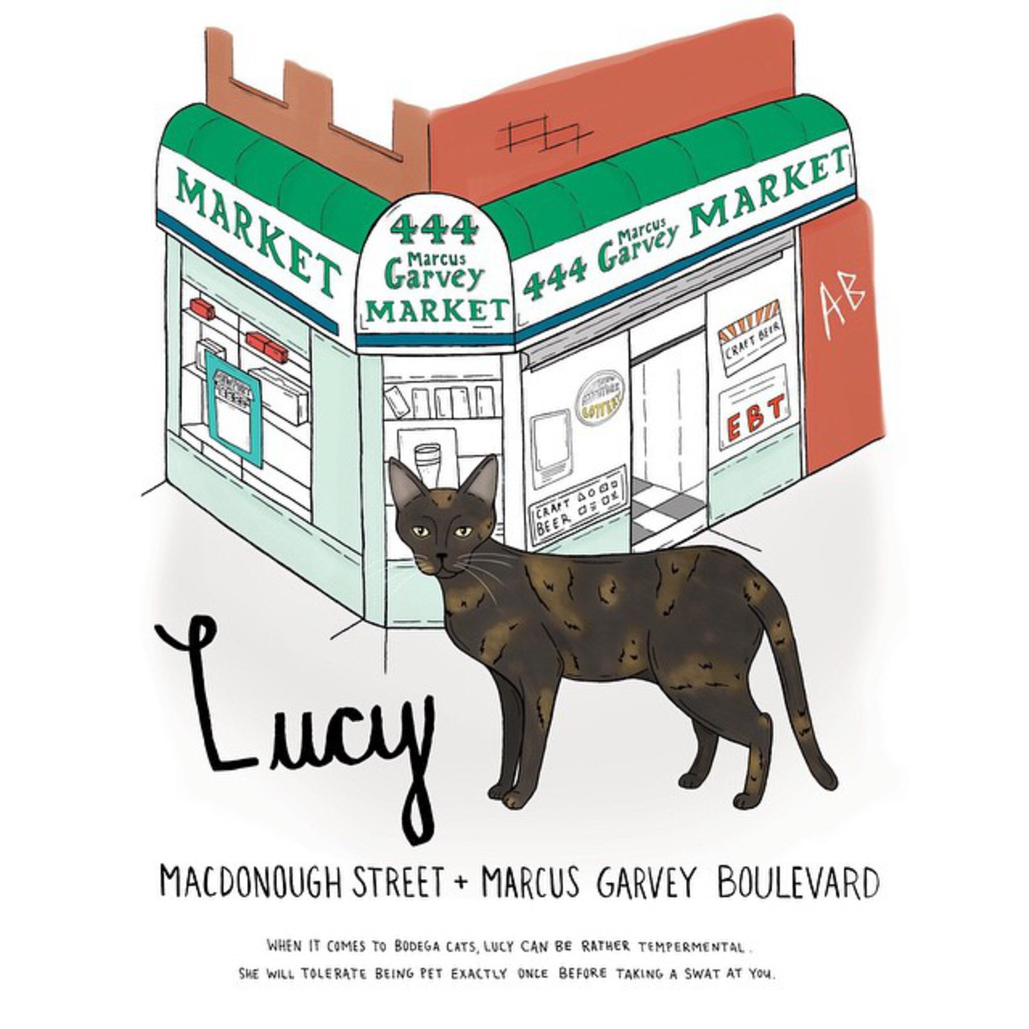 Lucy // Bed-Stuy #brooklynbodegacats #bodegacats #bodegacatsofinstagram #catsofinstagram #brooklyn #illustration