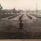 Former Bulls Head resident recounts Staten Island's past farm life