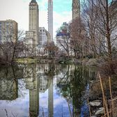 The Pond at Central Park, Manhattan