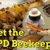 Meet the beekeepers of the NYPD