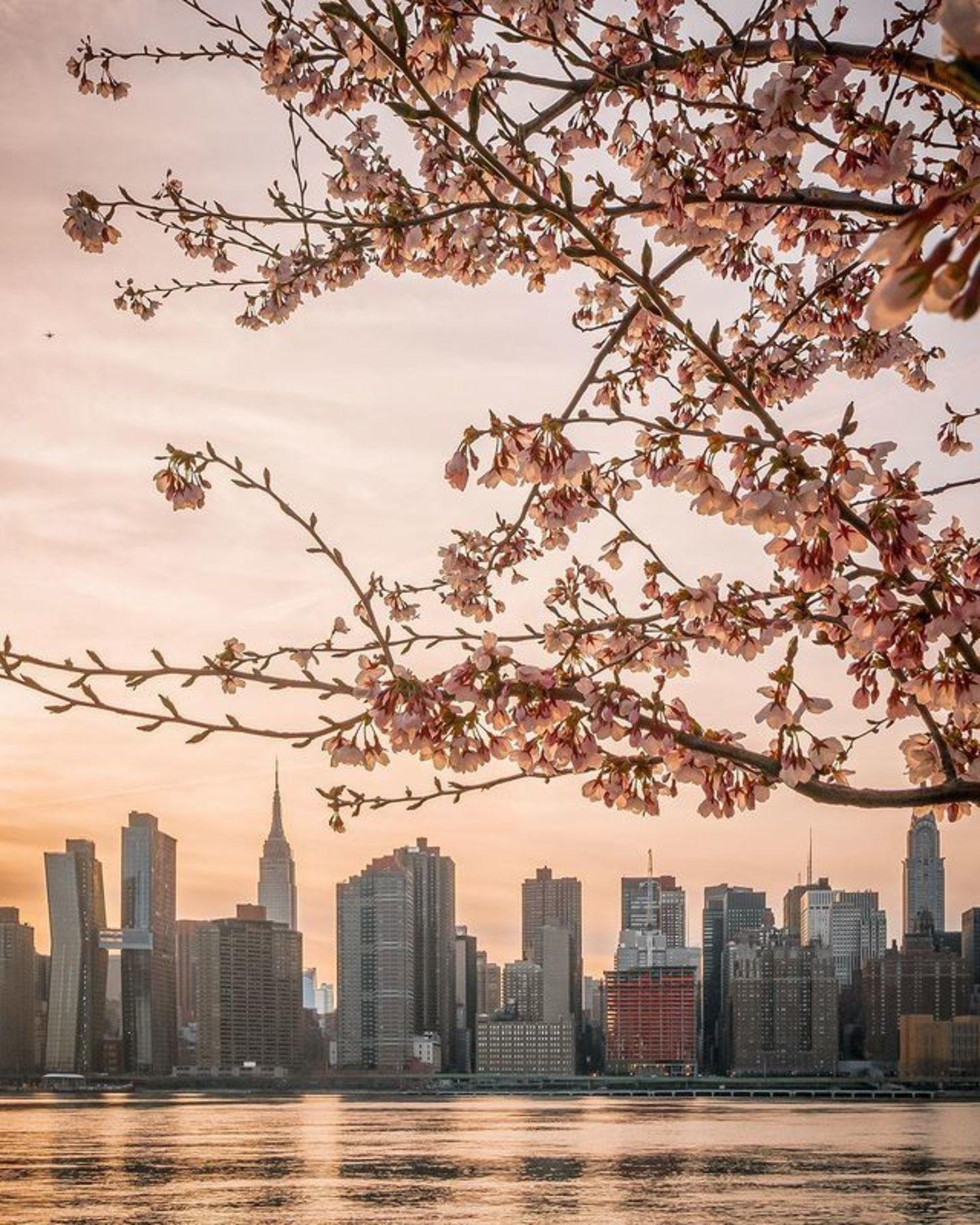 Manhattan skyline from Long Island City, Queens