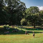 2020 in Prospect Park