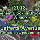 One Brooklyn-- Greenest Block in Brooklyn Winning Block