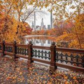 Central Park, Manhattan