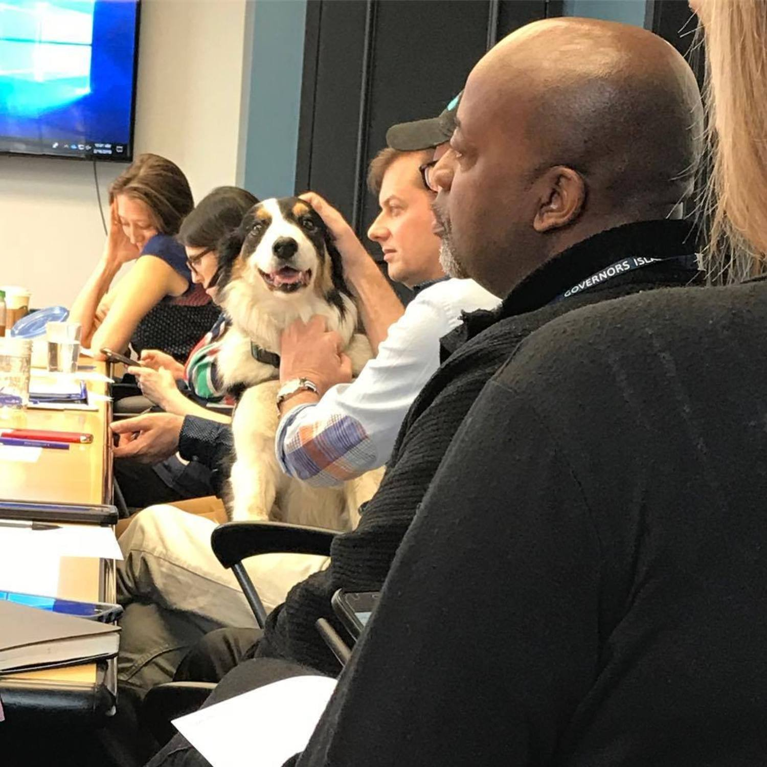 Maxie at biweekly Staff meeting, trying to convince someone/anyone that geese were running amuck somewhere on the Island.