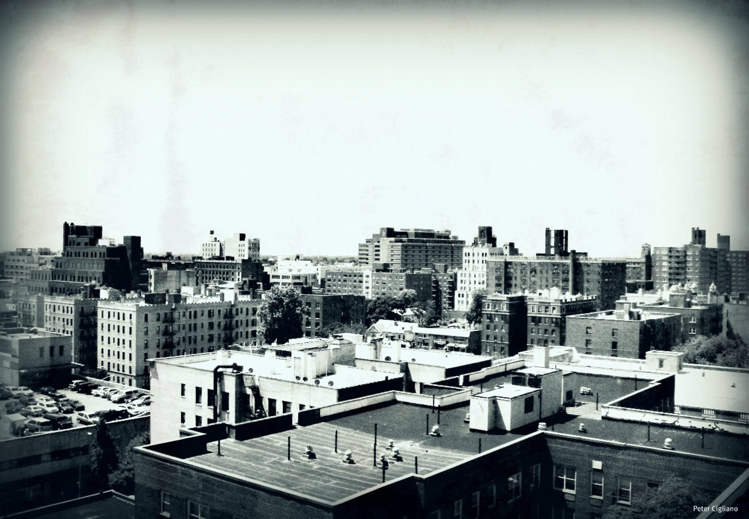 Jamaica Queens New York Rooftops | View out over Jamaica NY.