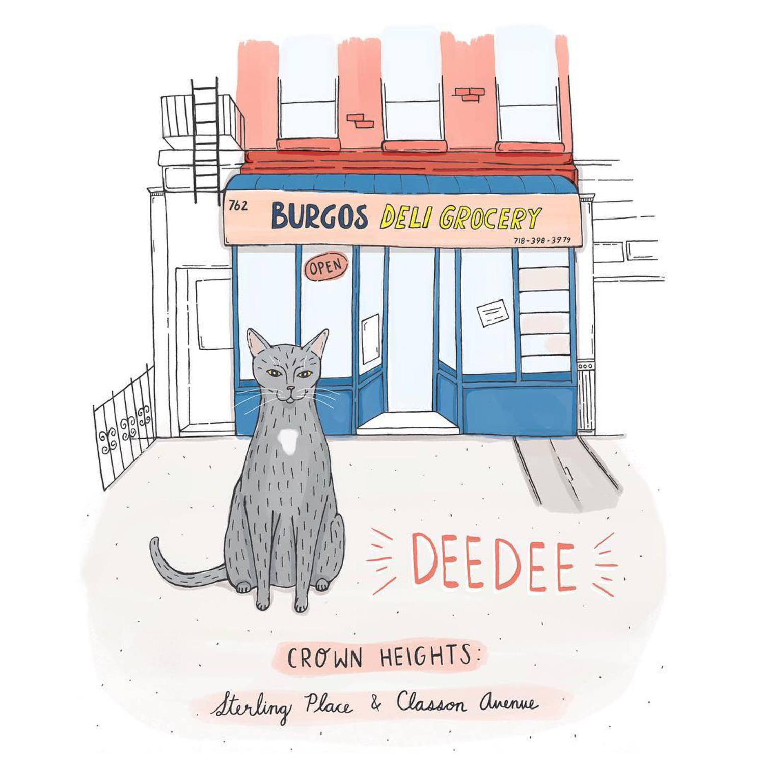 Deedee // Crown Heights, Brooklyn  #brooklynbodegacats #brooklyn #bodegacats #bodegacatsofinstagram #brooklynbodega #catillustration #illustration #brooklynillustrators #cats #catsofinstagram #crownheights
