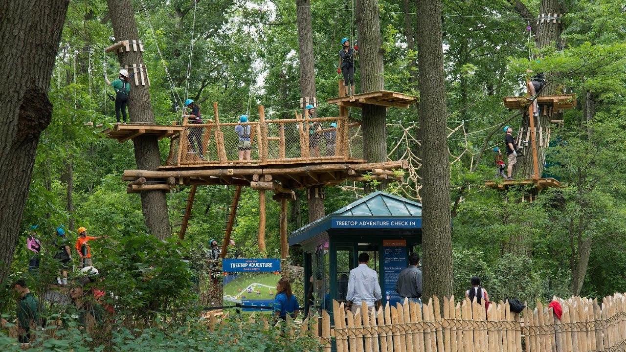 Watch Explore The Interactive Zipline And Treetop