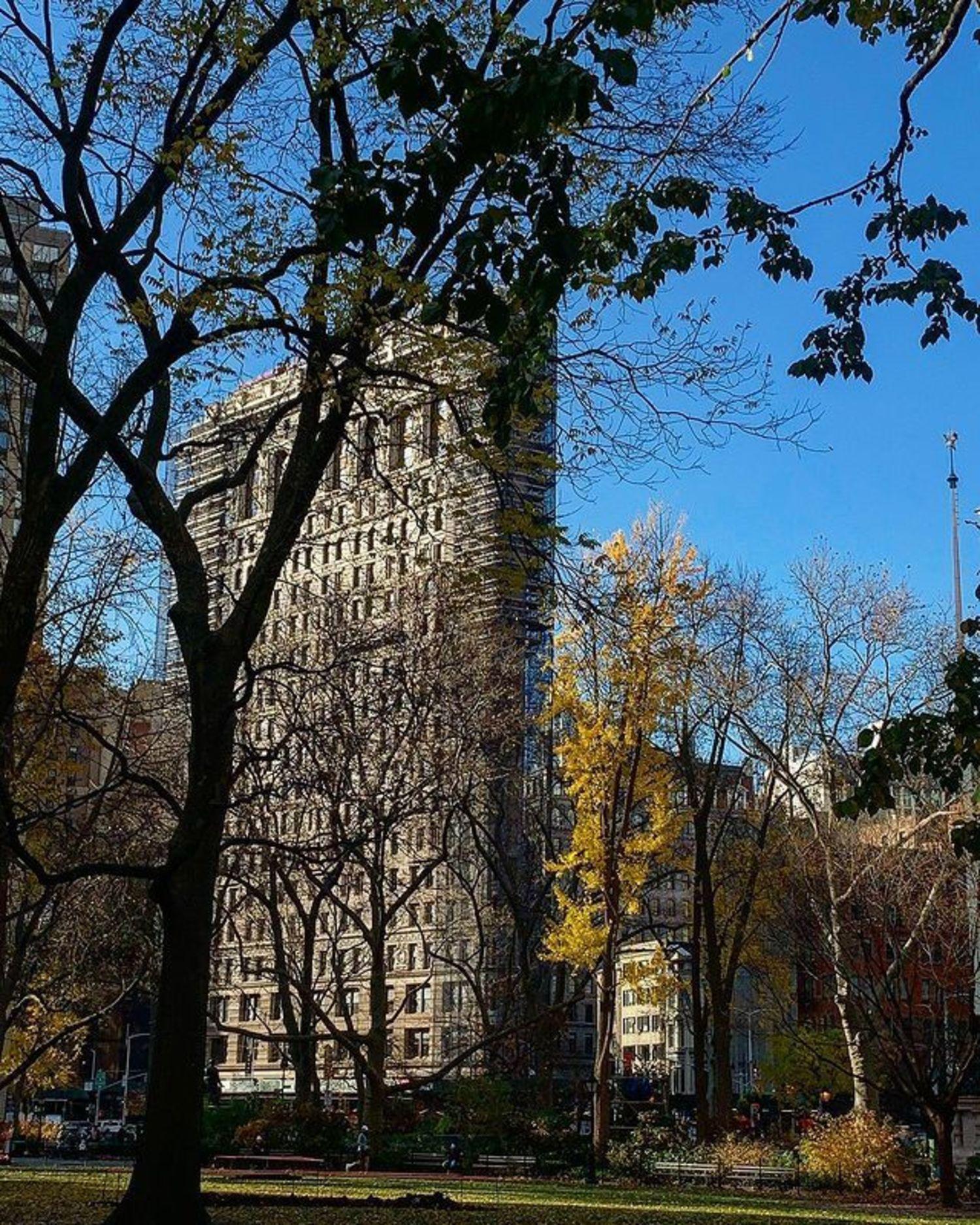 Flatiron Building and MAdison Square Park, Manhattan