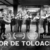 Flor de Toloache (Rhythm in Motion series)