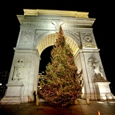 "Christmas at Washington Square Park | Had stopped by my fave secret parking spot tonight for a quick shot of the Xmas Tree by Washington Square Park's Arch.  Here's wishing one and all a very Merry Christmas!  :-)  New Yorkled  <a href=""http://www.newyorkled.com"" rel=""nofollow"">www.newyorkled.com</a>"