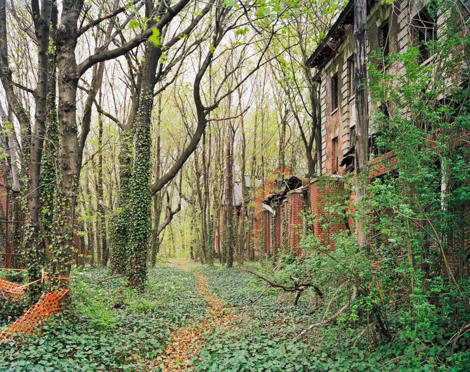 A street on North Brother Island.