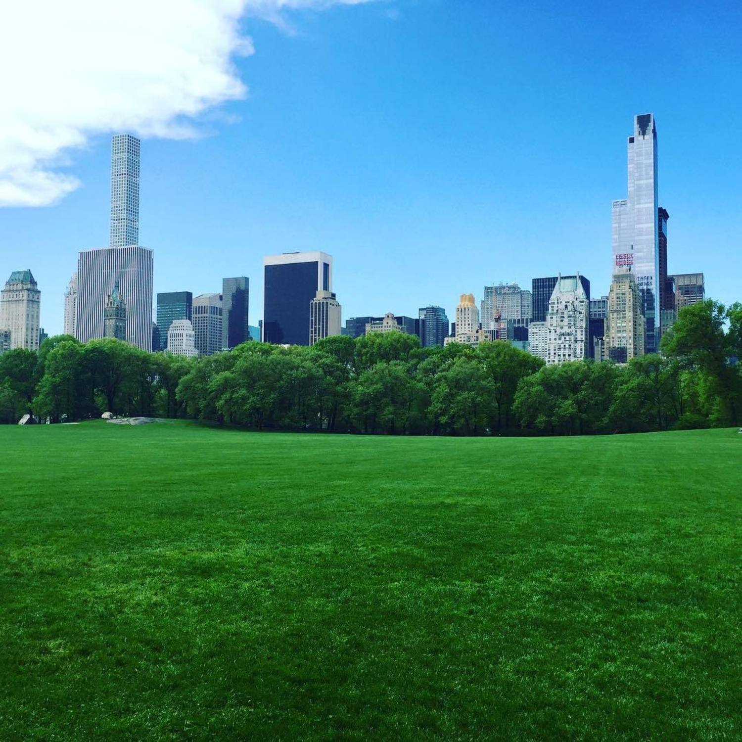 Sheep's Meadow, Central Park, NYC