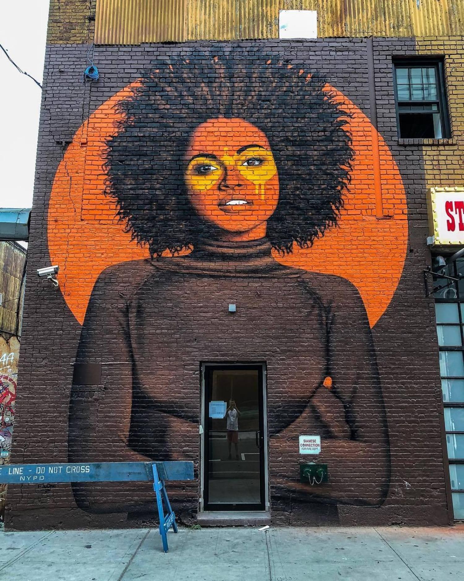 Fin Dac mural in Greenpoint, Brooklyn