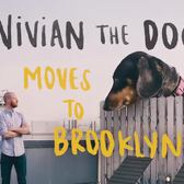 Vivian the Dog Moves to Brooklyn
