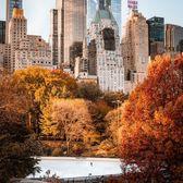 Wollman Rink, Central Park, Manhattan