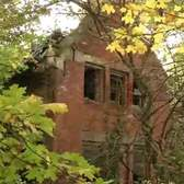 NY1: North Brother Island