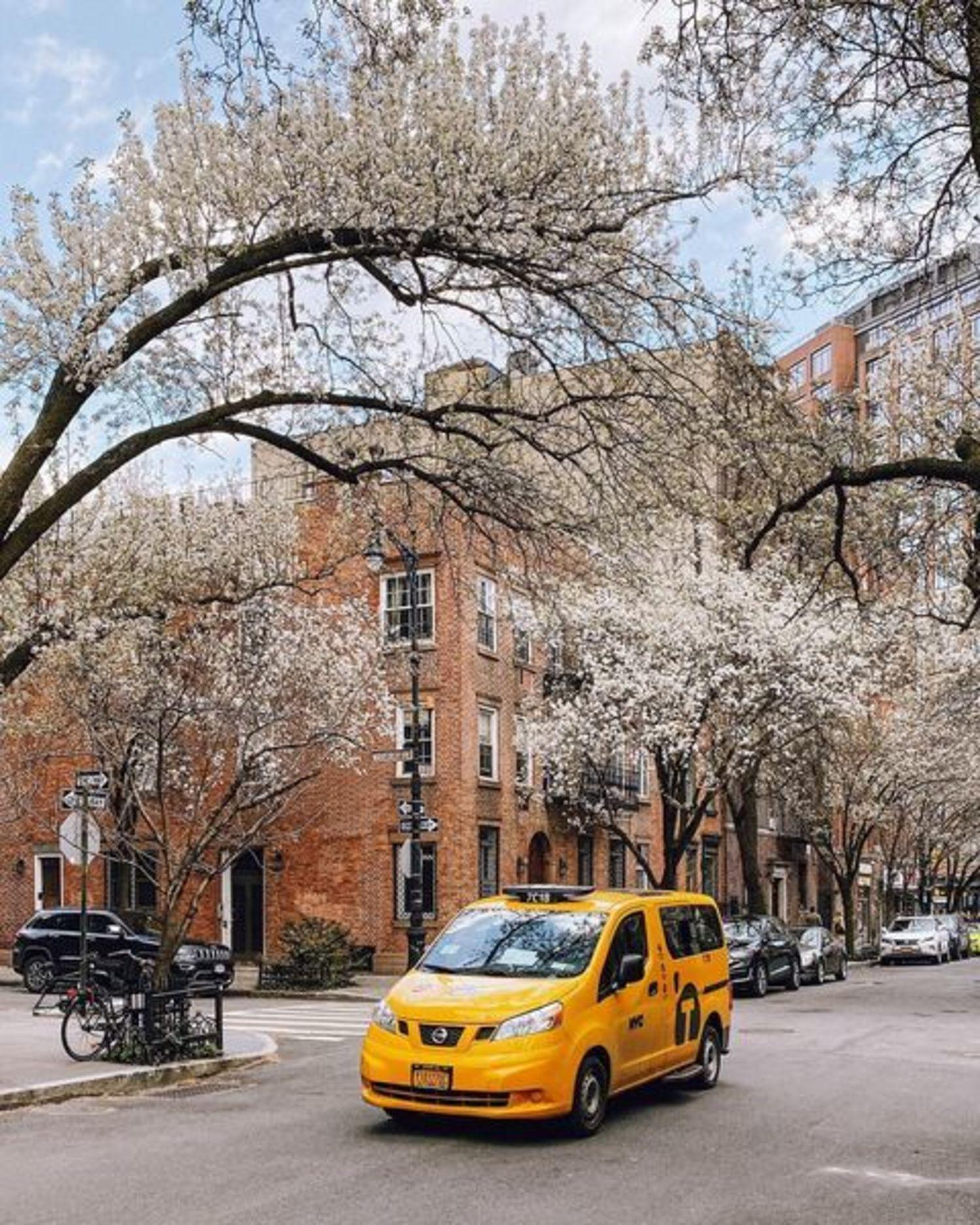 Spring in the West Village, Manhattan