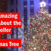 Eight Amazing Facts About the Rockefeller Center Christmas Tree